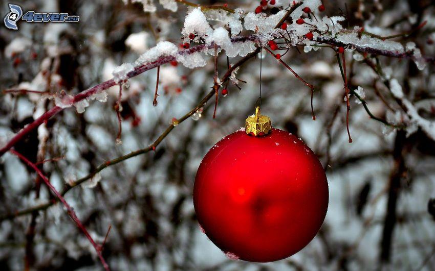 christmas ball, snowy branch