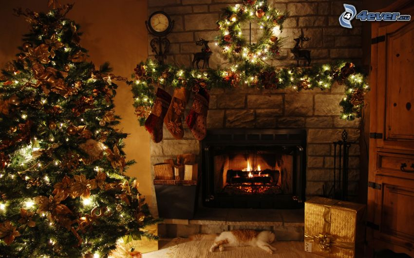 christmas tree, fireplace, living room