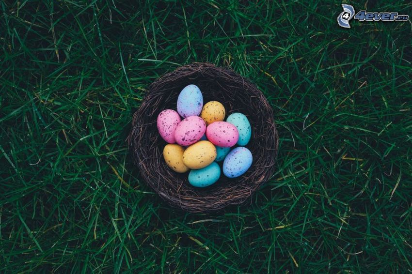easter eggs, grass, basket