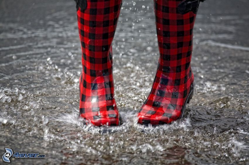 boots, rain, water, splash