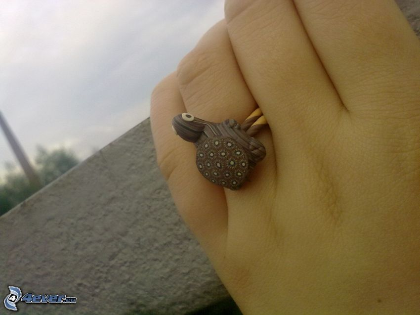 ring, turtle, hand