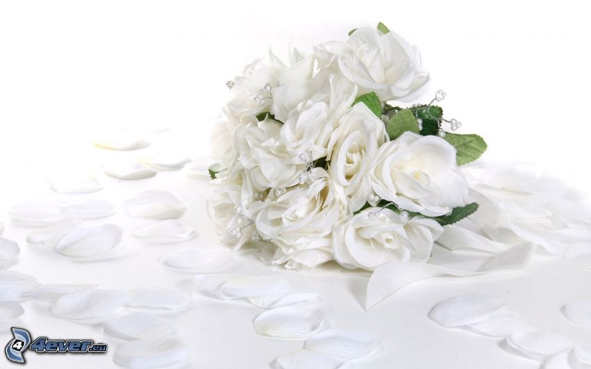 wedding bouquet, white flowers