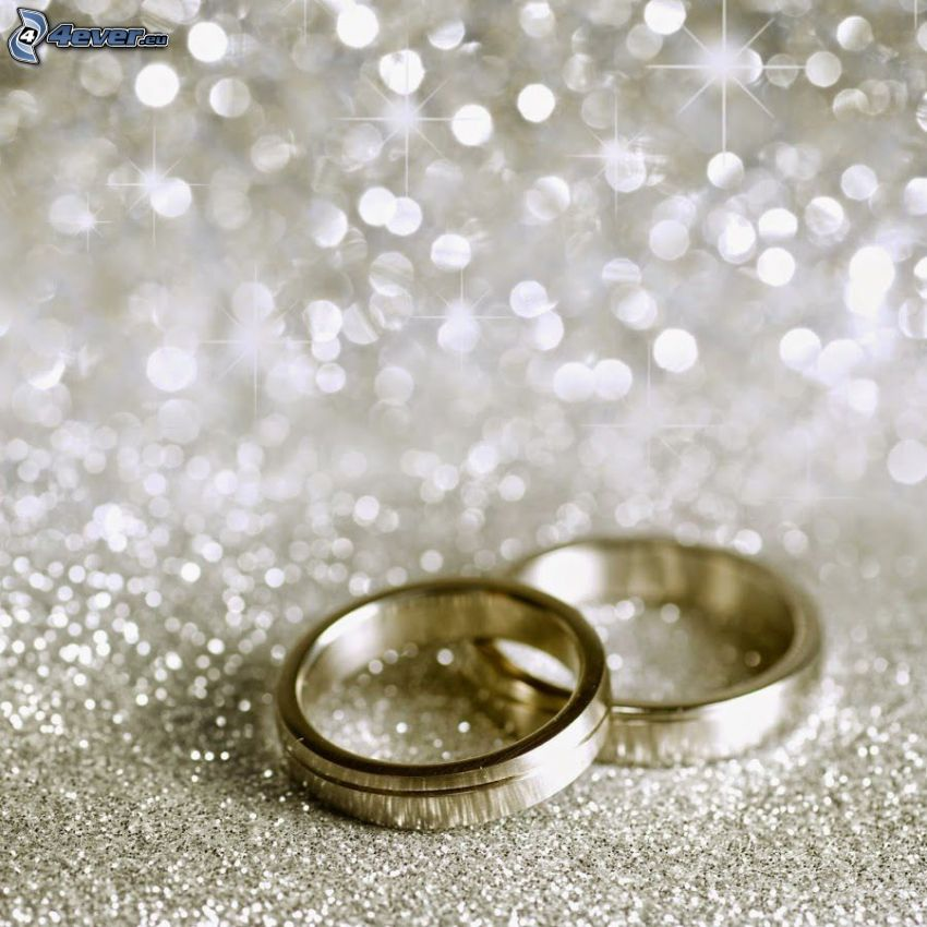 wedding rings, circles, silver