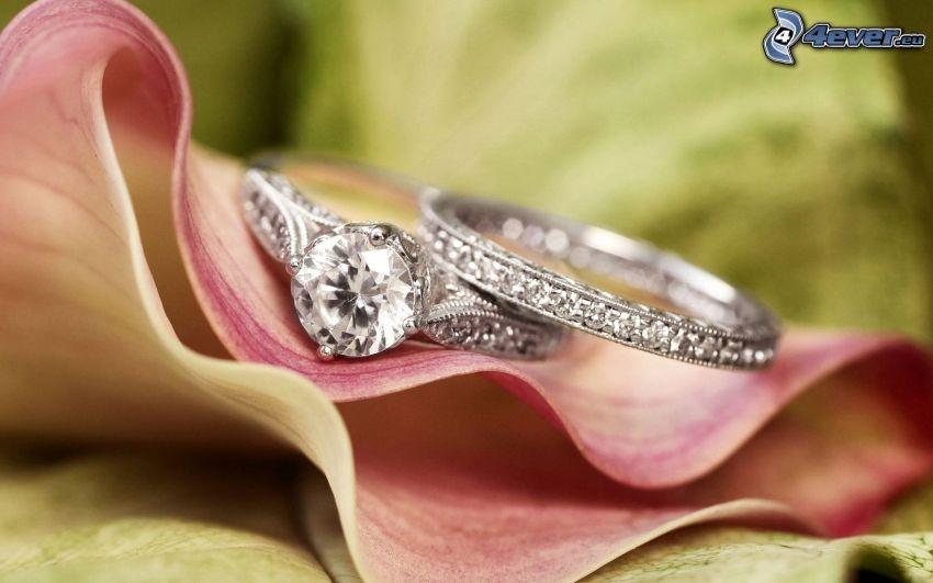wedding rings, leaf
