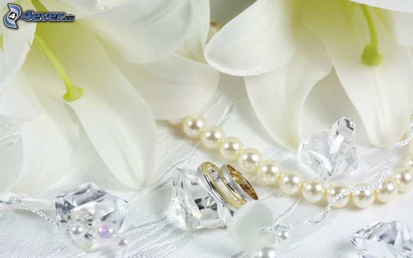 wedding rings, lily, white flowers, pearl necklace, diamonds