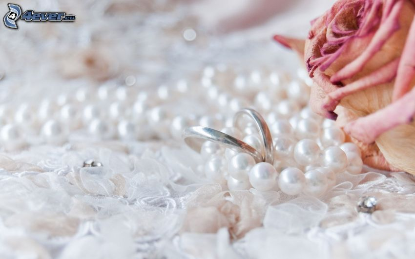 wedding rings, pearl necklace, rose