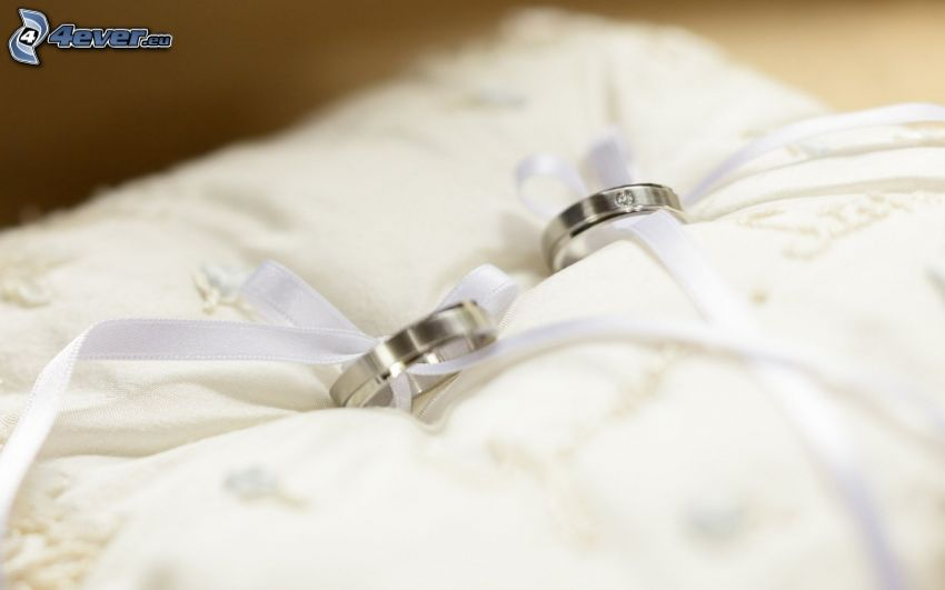 wedding rings, pillow
