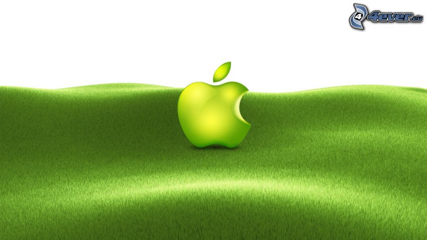 Apple, green grass