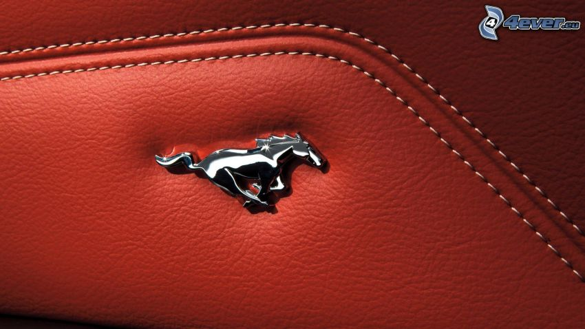 Ford Mustang, leather