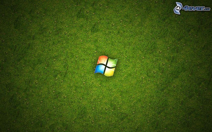 Windows, green background