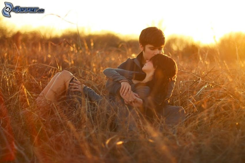 couple, field, sunset, kiss