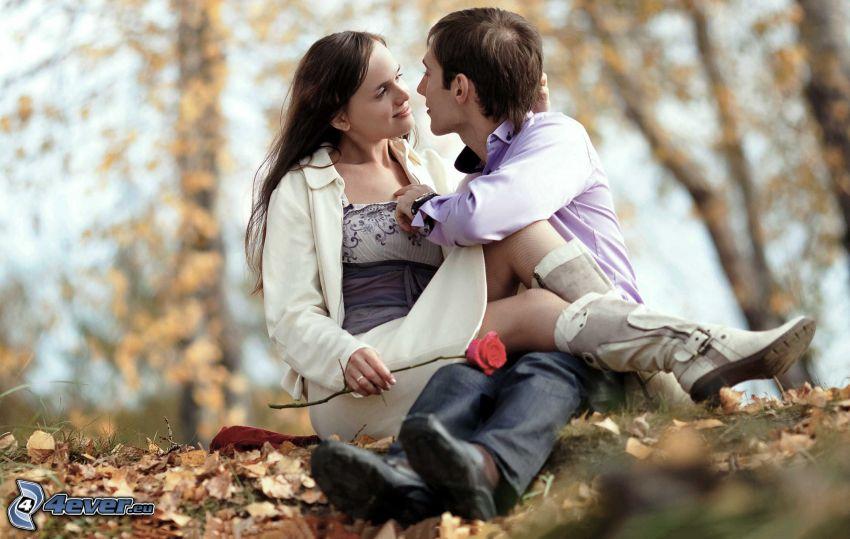 couple, rose, autumn leaves