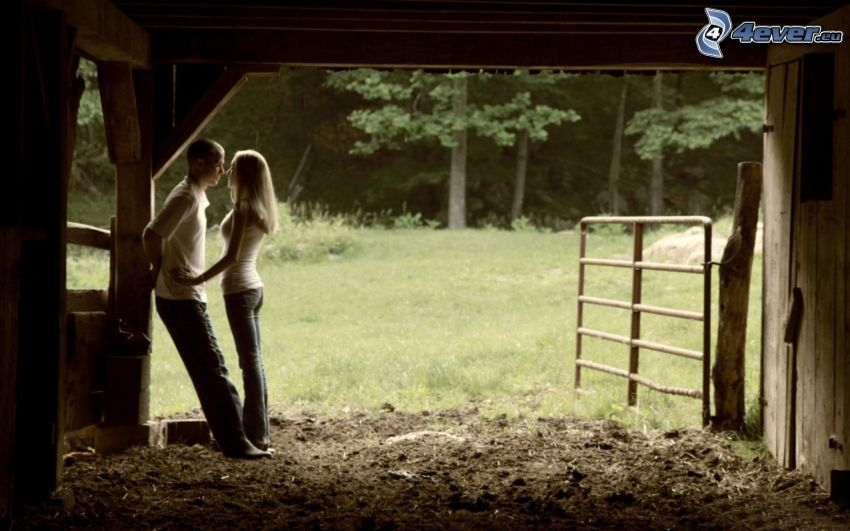 couple, stable