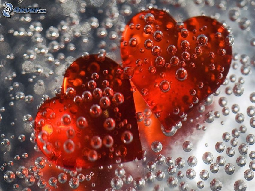 red hearts, bubbles