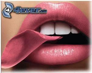 lips, leaf, rose