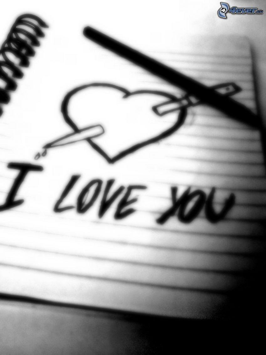 I love you, love