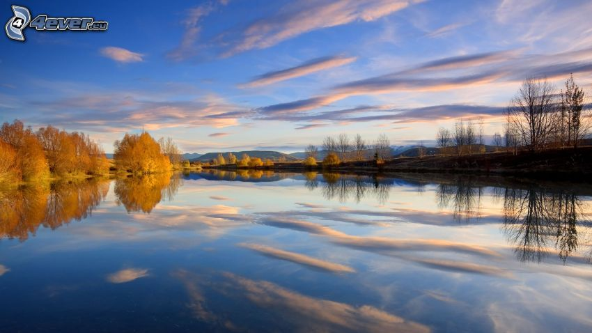 calm water level, sky, yellow trees