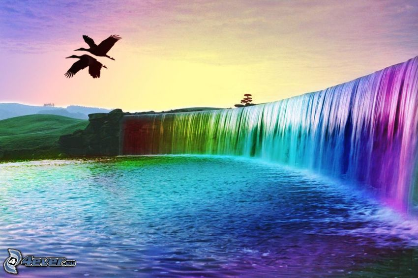 colored waterfall, birds