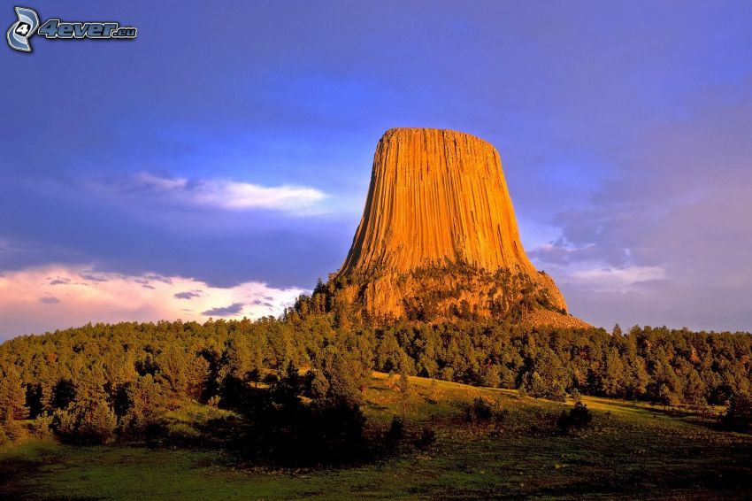 Devils Tower, coniferous forest, meadow