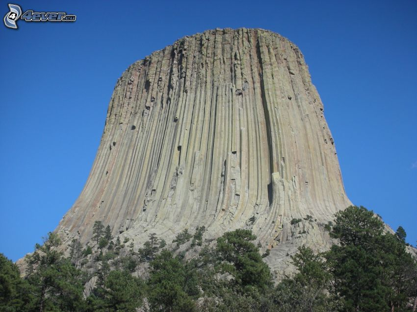 Devils Tower, rock, coniferous trees
