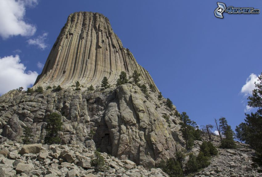 Devils Tower, rocks, coniferous trees