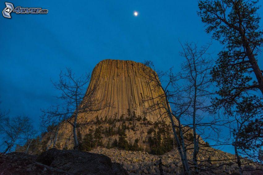 Devils Tower, rocks, dry trees, coniferous trees, moon, evening