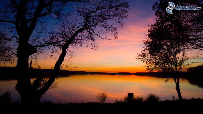 evening sky, silhouettes of the trees, lake