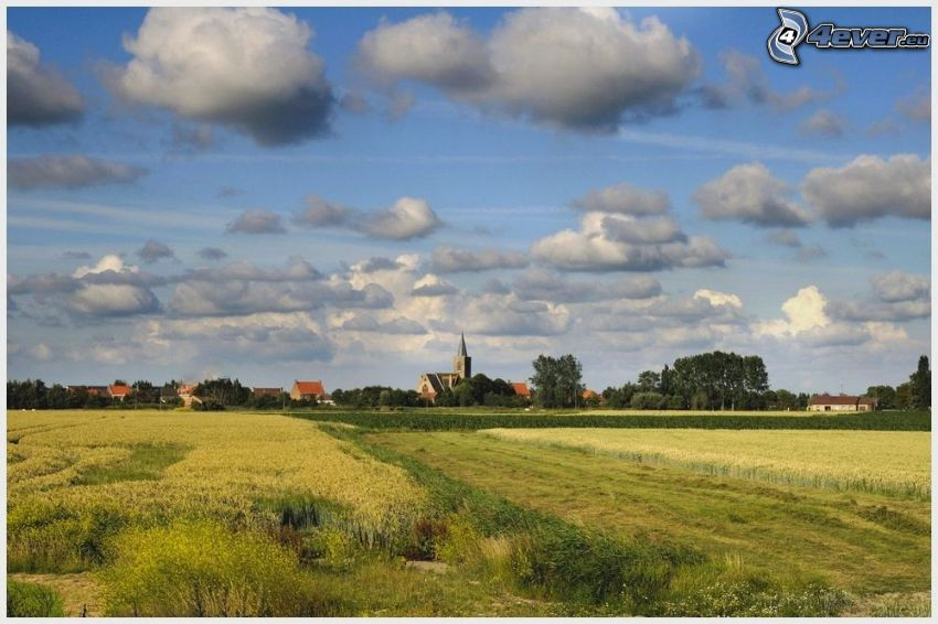 field, houses, church, clouds