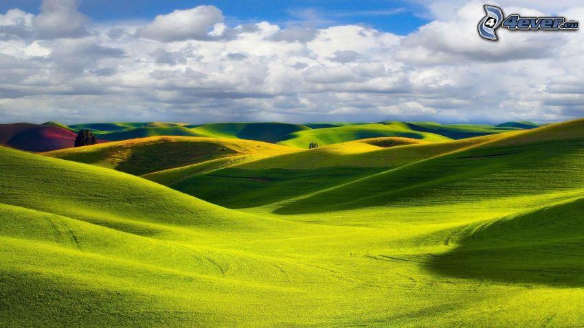 fields, clouds