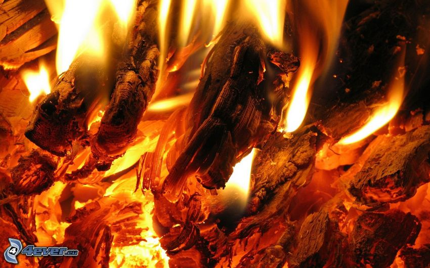 hot coals, fire