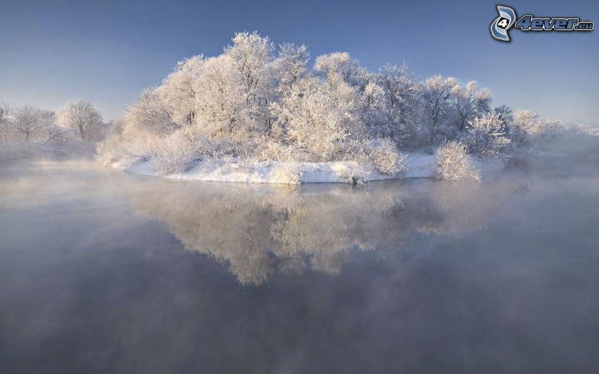 island, snowy trees, lake, steam