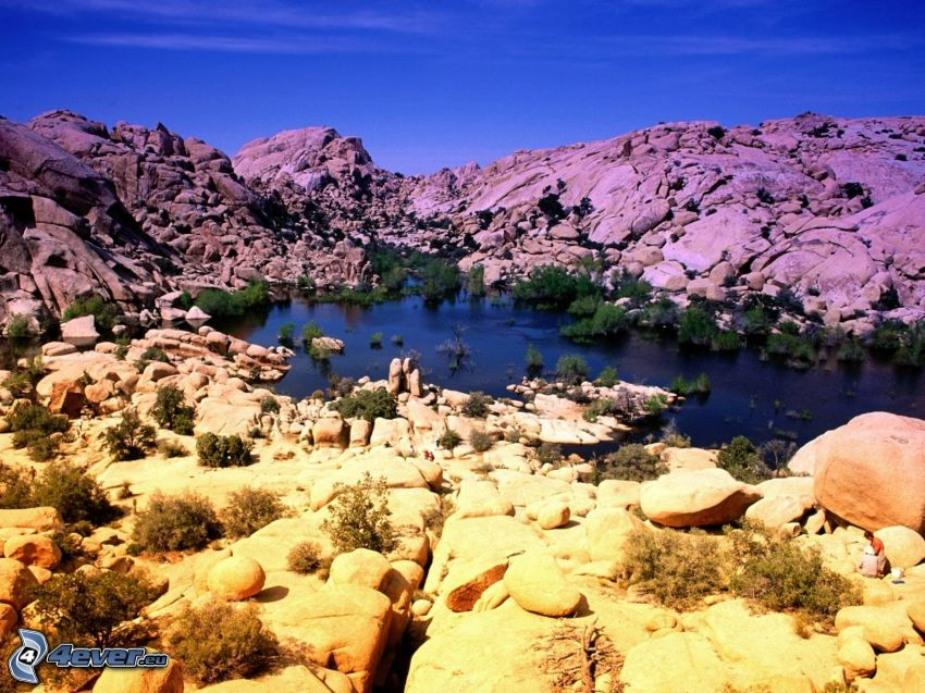 Joshua Tree National Park, rocks, lake, bushes