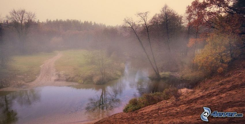 lake, autumn trees, steam