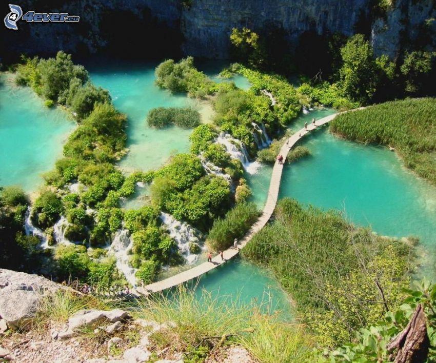 lake, bridge, greenery, people