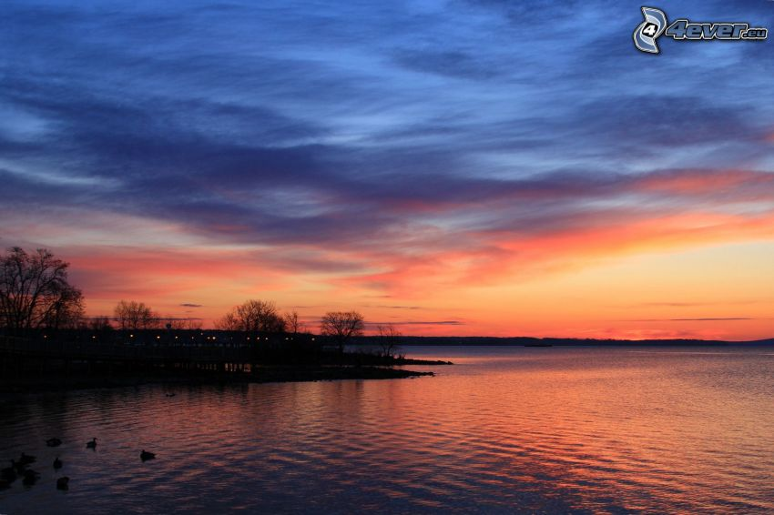 lake, evening sky, shore