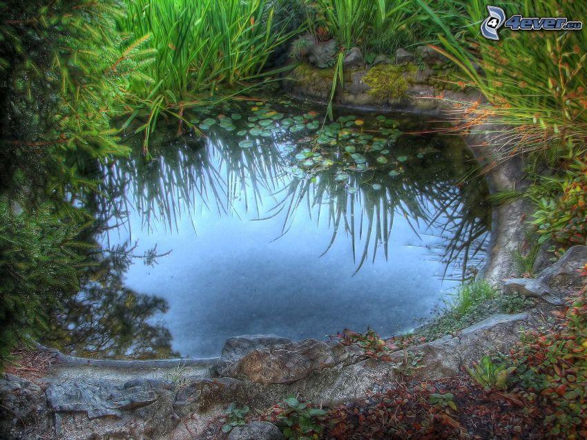 lake, HDR
