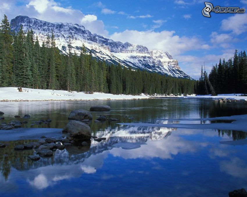 Bow River, forest, snowy mountains, Alberta, Canada