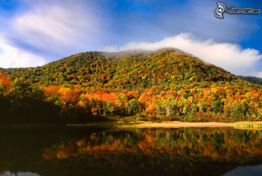 colorful autumn forest, hill, lake, clouds, Vermont, USA