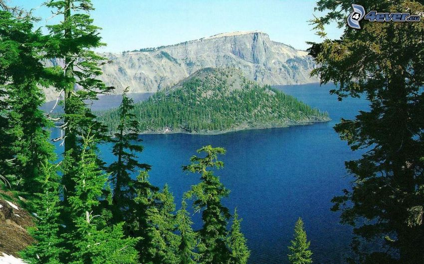 Crater Lake, Wizard island, Oregon, island, coniferous forest