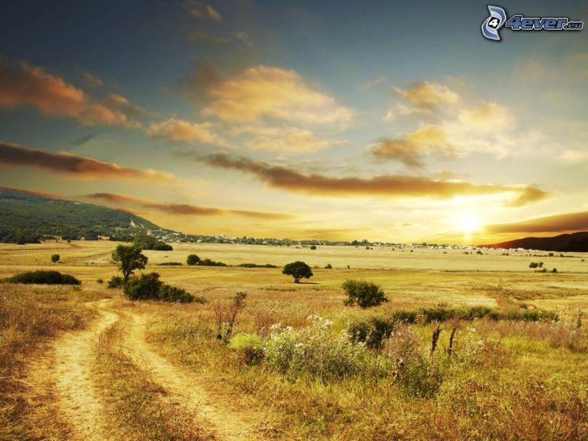 field path, sunset on the savannah