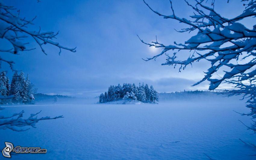 frozen lake, snowy landscape