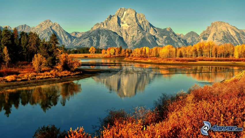 Grand Tetons National Park, Snake River, River, yellow autumn forest