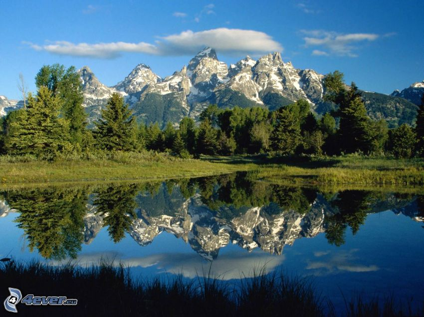 Grand Tetons National Park, snowy mountain above the lake, lake in the forest, calm water level, mountains