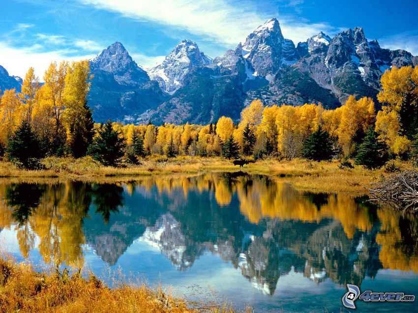 Grand Tetons National Park, Wyoming, lake in the forest, yellow trees, mountains