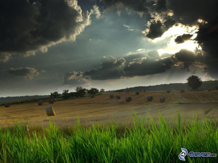 hay after harvest, field, sunbeams behind clouds