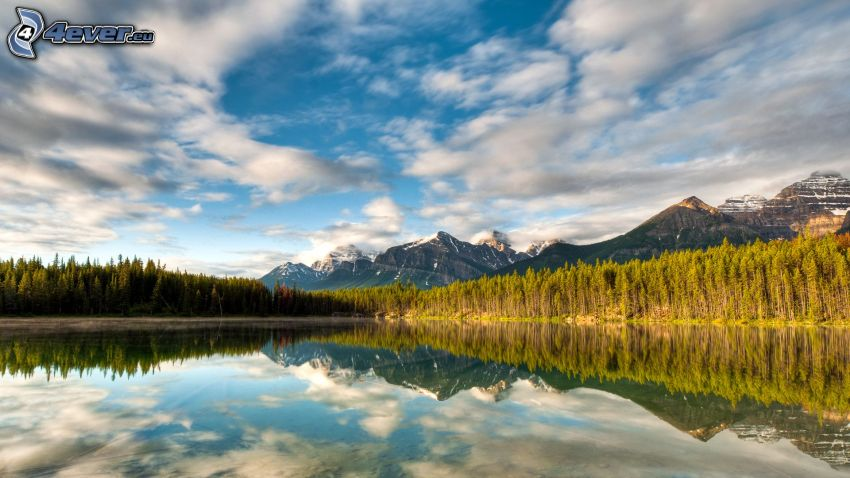 Herbert Lake, Banff National Park, lake in the forest, mountains, reflection, calm water level