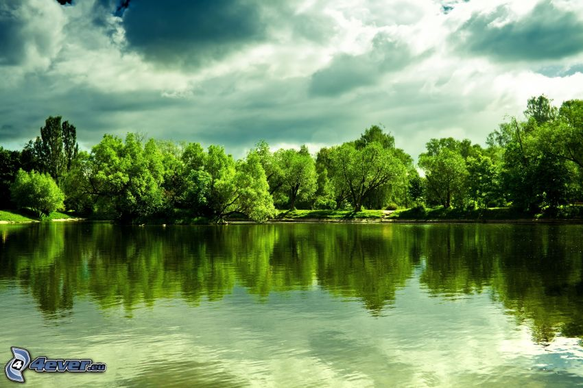 lake, green trees, clouds