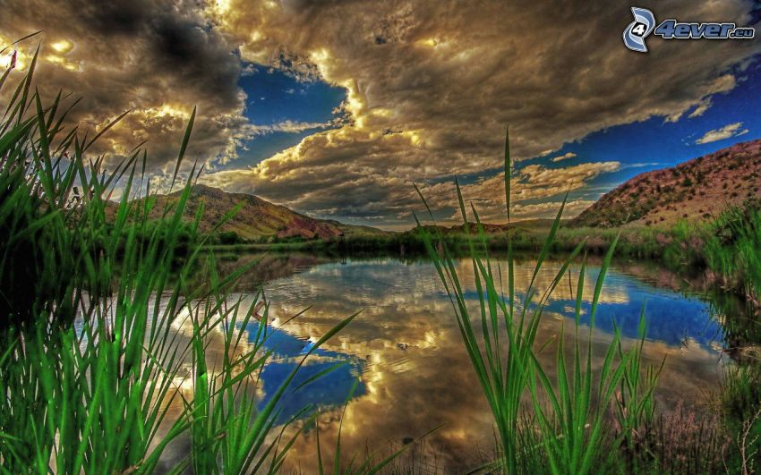 lake, sun behind the clouds, high grass, reflection, HDR