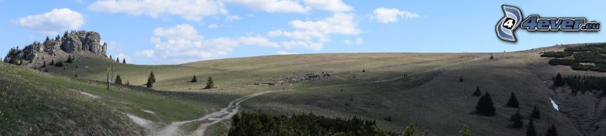 mountain, meadow, field path