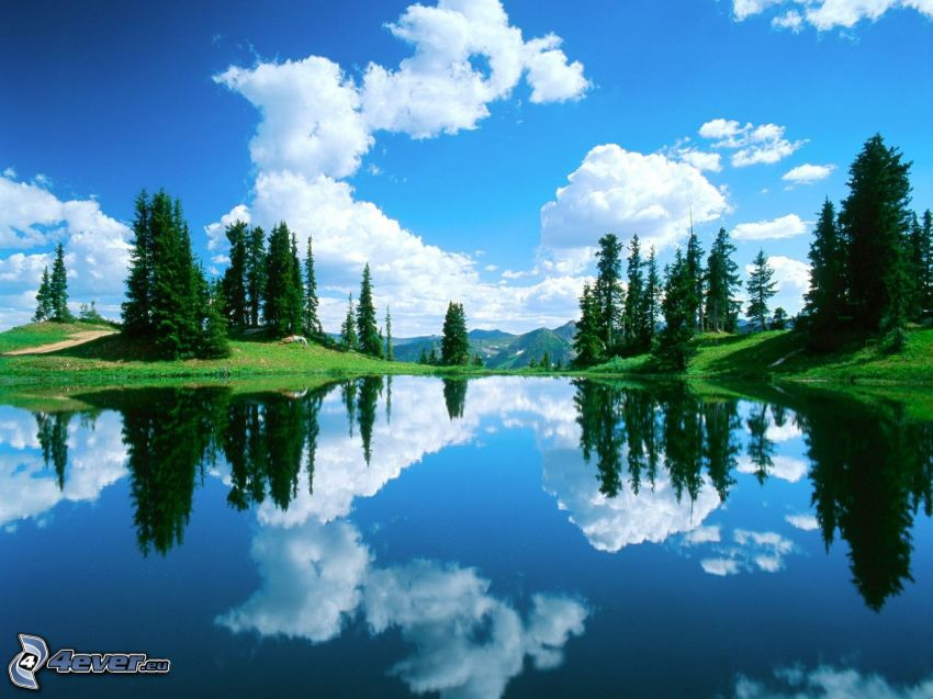mountain lake, calm water level, coniferous trees, sky, clouds, reflection